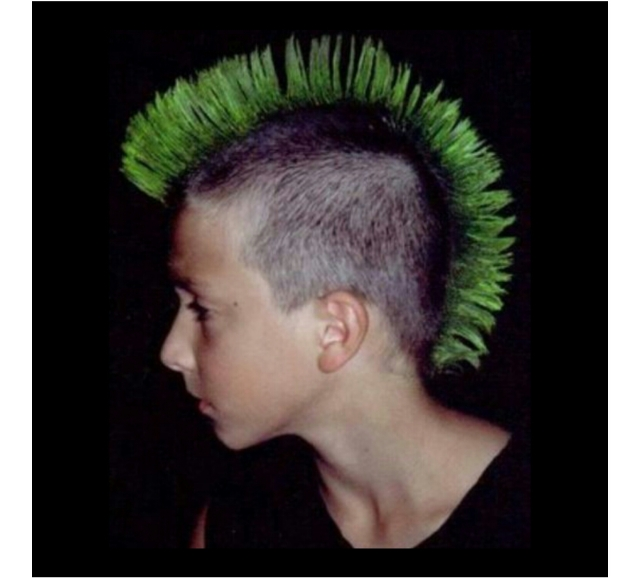mohawk hairstyle' and the mordern fashion – the london press