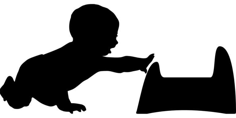 potty-training-153278_960_720